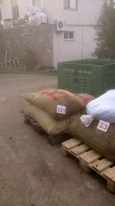 Fabrikaya inen üst zeytin hasadı, 223 nolu